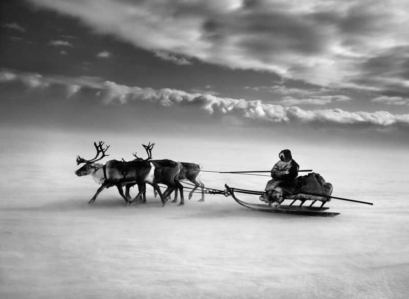 Península-de-Yamal-(créd.-Sebastião-Salgado)